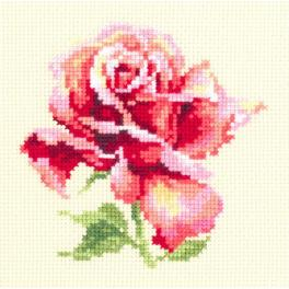MN 150-001 Zestaw do haftu - Piękna róża