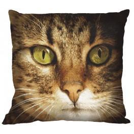 Wzór graficzny - Poduszka – Kot Lucky - Haft krzyżykowy