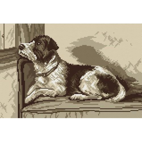Wzór graficzny online - Psia tęsknota