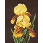 W 865 Wzór graficzny ONLINE pdf - Żółte irysy