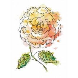 Wzór graficzny online - Magiczna begonia