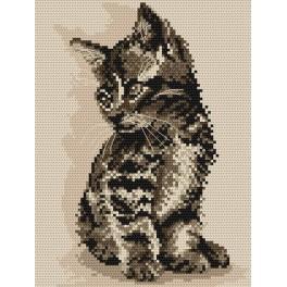 Wzór graficzny online - Kotek
