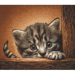 Wzór graficzny online - Kotek na drabinie