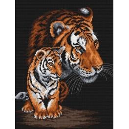 Kanwa z nadrukiem - A. Songin - Dzikie koty