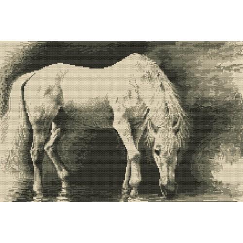 Kanwa z nadrukiem - Koń biały