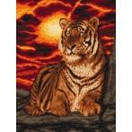 Kanwa z nadrukiem - Tygrys