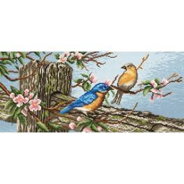 Kanwa z nadrukiem - Ptaszki