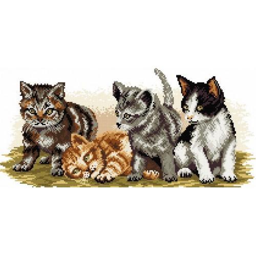 Kanwa z nadrukiem - Kocie rodzeństwo
