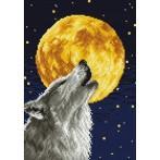 Kanwa z nadrukiem - Pełnia księżyca