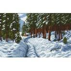 Kanwa z nadrukiem - Droga przez las