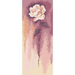 Kanwa z nadrukiem - B. Sikora - Biała róża_