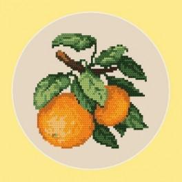 Kanwa z nadrukiem - Słodkie pomarańcze