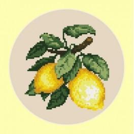 Kanwa z nadrukiem - Apetyczne cytryny