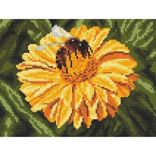 Kanwa z nadrukiem - W poszukiwaniu nektaru