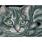 Kanwa z nadrukiem - Kot