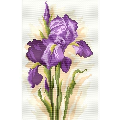 Kanwa z nadrukiem - Piękne kwiaty