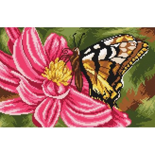 Kanwa z nadrukiem - Motyl i Dalia