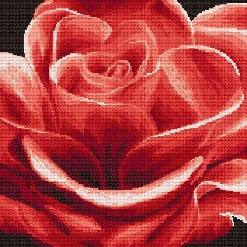Kanwa z nadrukiem - Róża czerwona