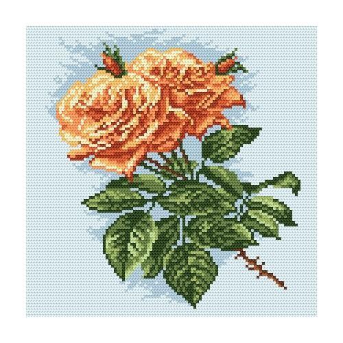 Kanwa z nadrukiem - Herbaciane róże