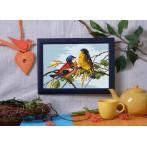 Kanwa z nadrukiem - Barwne ptaszki