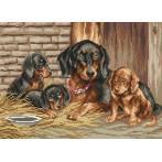 Kanwa z nadrukiem - Psia rodzinka