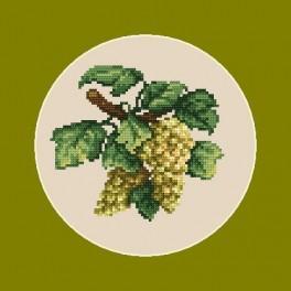 Kanwa z nadrukiem - Jasne winogrona