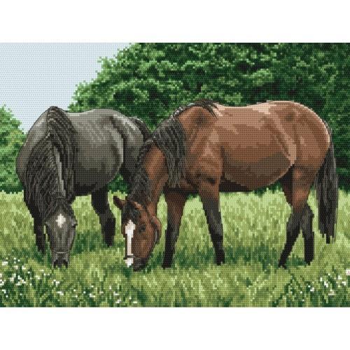 Kanwa z nadrukiem - Konie na pastwisku