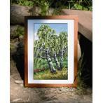 Kanwa z nadrukiem - Tryptyk - Smukłe brzozy