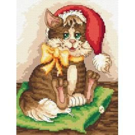 Kanwa z nadrukiem - Słodki kociak