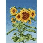 Wzór graficzny online - Piękne słoneczniki