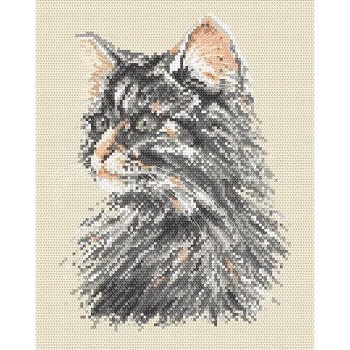 Wzór graficzny online - Kot