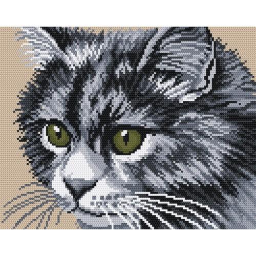 Wzór graficzny online - Kot syberyjski
