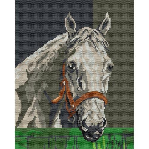 Wzór graficzny online - Koń