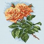 Wzór graficzny online - Herbaciane róże