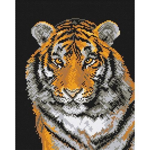 W 444 Wzór graficzny ONLINE pdf - Tygrys