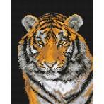 W 444 Wzór graficzny online - Tygrys