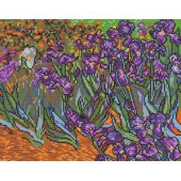 W 478 Wzór graficzny online - Irysy - V. van Gogh