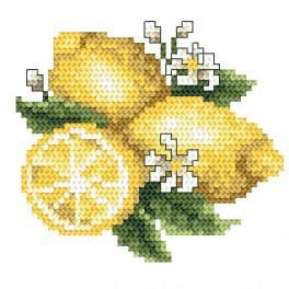 W 4909 Wzór graficzny online - Cytrynki