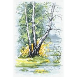 Wzór graficzny - Wiosenne brzozy