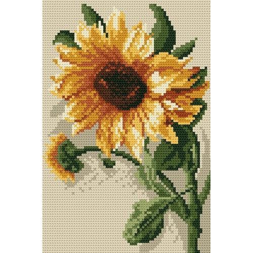 Wzór graficzny - Słonecznik