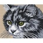Wzór graficzny - Kot syberyjski