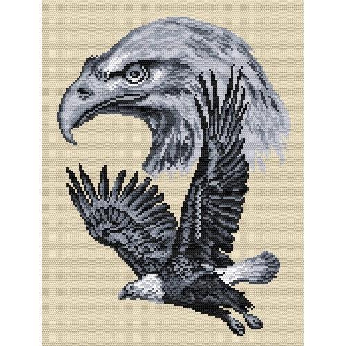 Wzór graficzny - Ptaki polskie - Orzeł