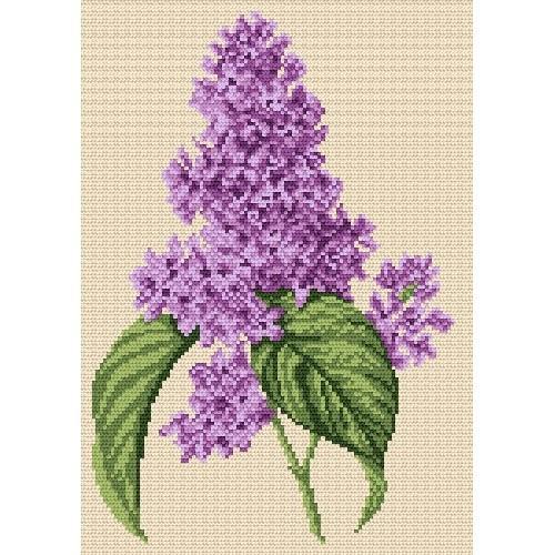 Wzór graficzny - Kwiat bzu