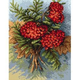 Wzór graficzny - Jesienna jarzębina - B. Sikora