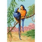 Wzór graficzny - Rajskie ptaki