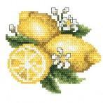 Wzór graficzny - Cytrynki