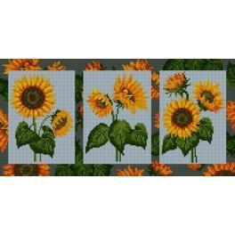 GC 6553 Wzór graficzny - Słoneczniki