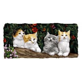 GC 7194 Wzór graficzny - Koty
