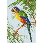 Wzór graficzny - Papuga