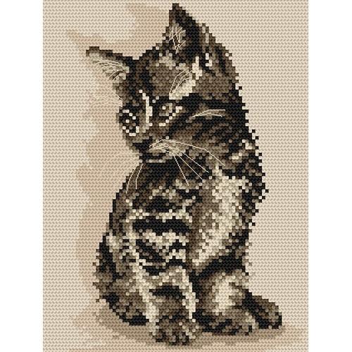 Wzór graficzny - Kotek